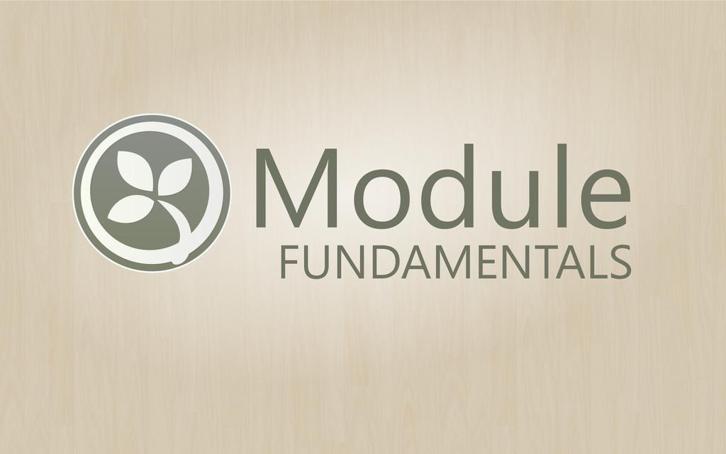 Module FUNDAMENTALS
