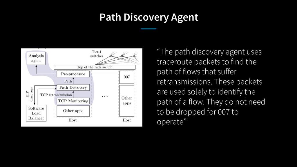 "Path Discovery Agent ""The path discovery agent ..."