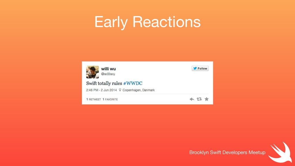 Early Reactions Brooklyn Swift Developers Meetup