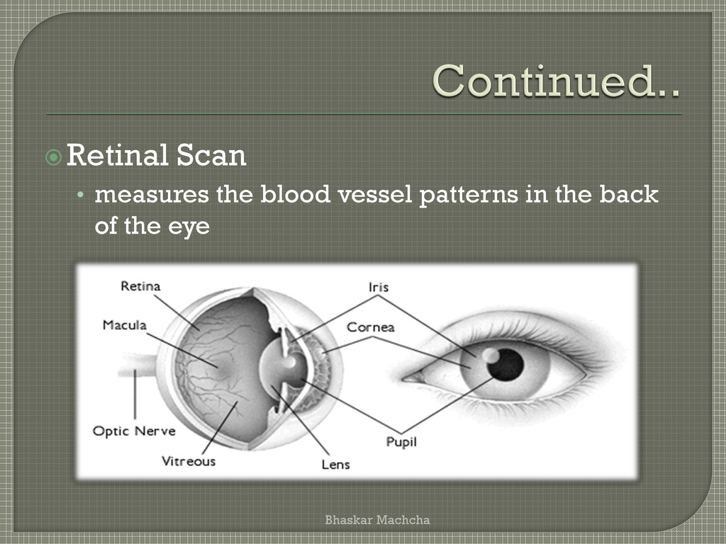 Retinal Scan • measures the blood vessel patte...
