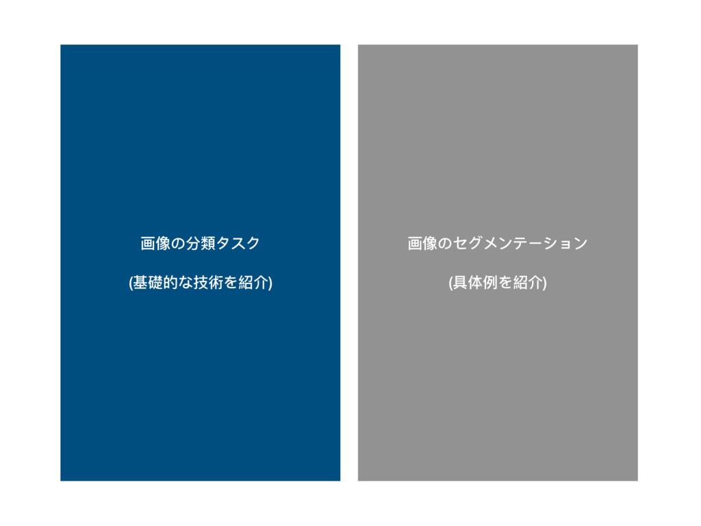 画像のセグメンテーション (具体例例を紹介) 画像の分類類タスク (基礎的な技術を紹介)