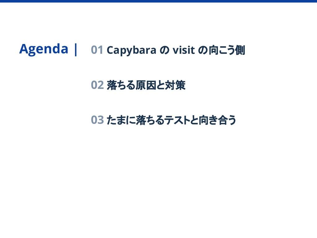 Agenda   01 Capybara の visit の向こう側 02 落ちる原因と対策 ...