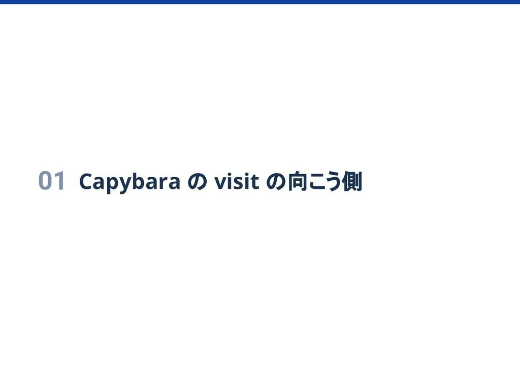 01 Capybara の visit の向こう側