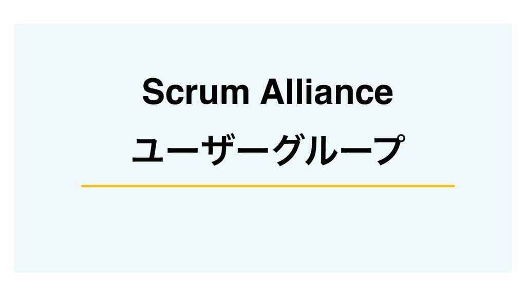 Scrum Alliance Ϣʔβʔάϧʔϓ