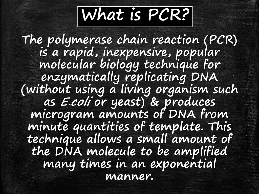 What is PCR? The polymerase chain reaction (PCR...