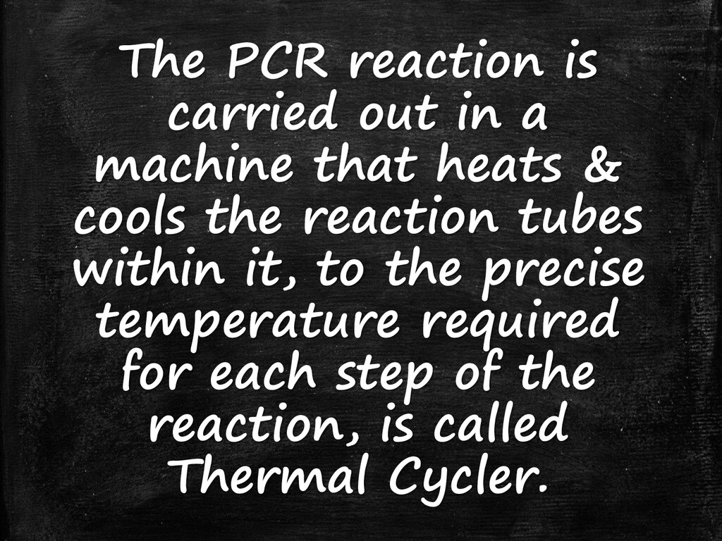 The PCR reaction is carried out in a machine th...