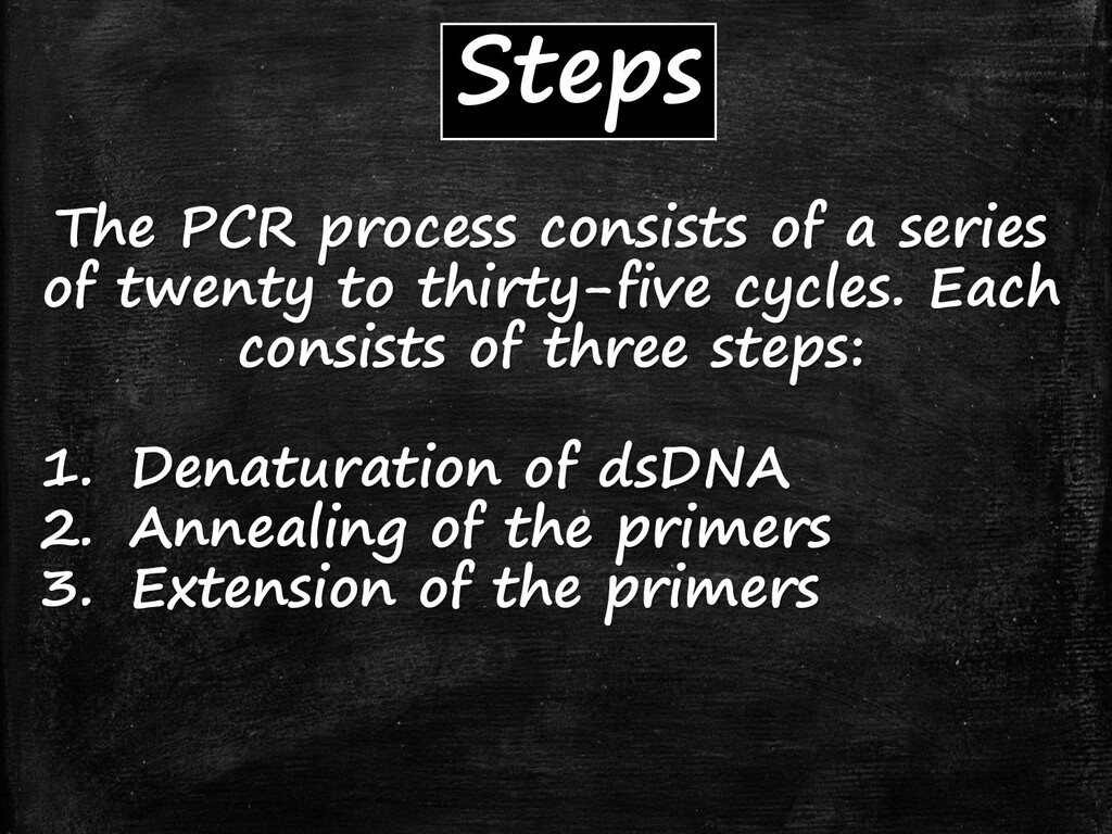 Steps The PCR process consists of a series of t...