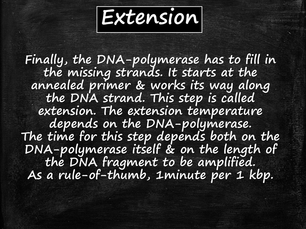Extension Finally, the DNA-polymerase has to fi...