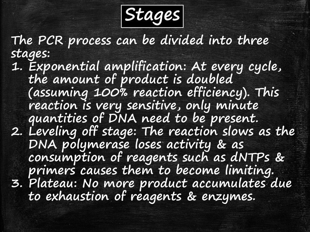Stages The PCR process can be divided into thre...