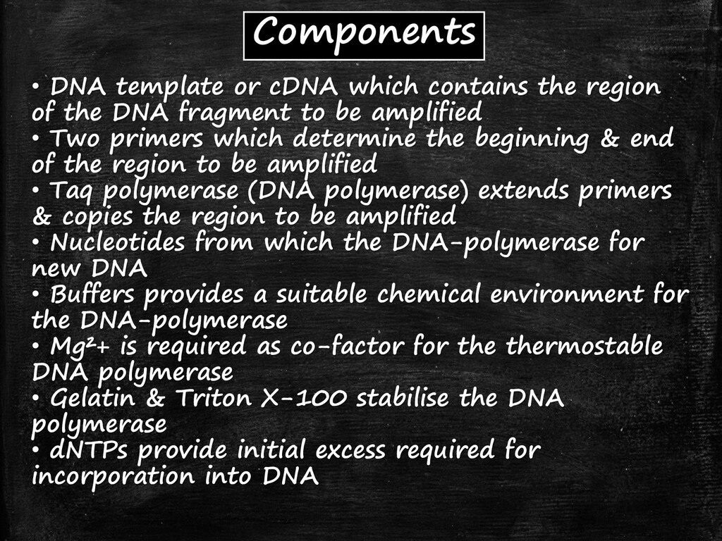 Components • DNA template or cDNA which contain...