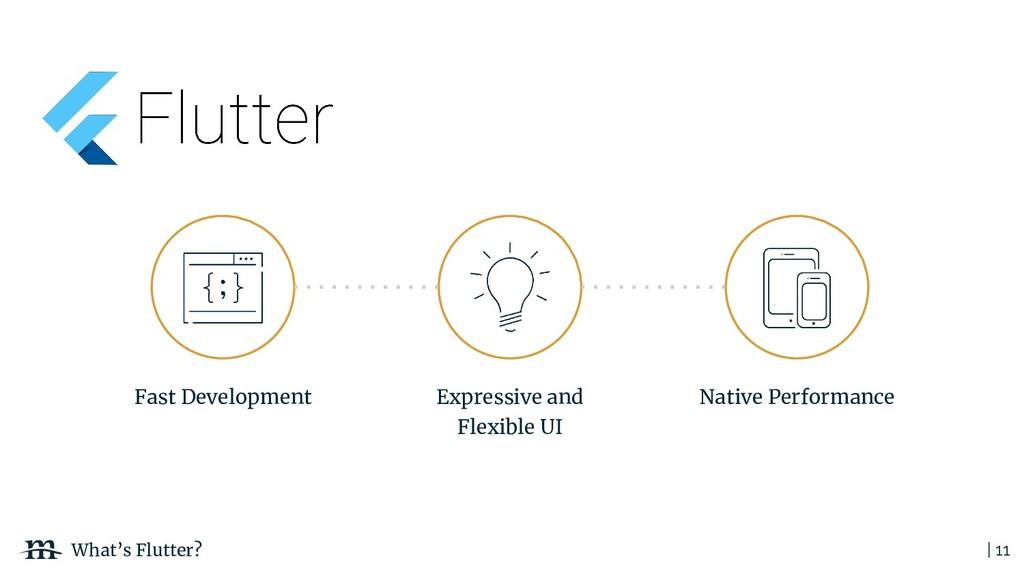 | 11 What's Flutter? Fast Development Native Pe...