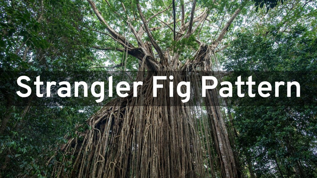 Strangler Fig Pattern