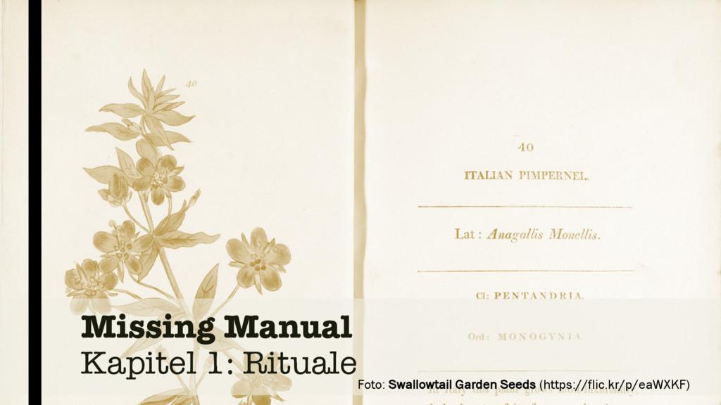 Missing Manual Kapitel 1: Rituale Foto: Swallow...
