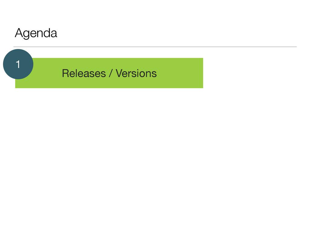 Agenda Releases / Versions 1