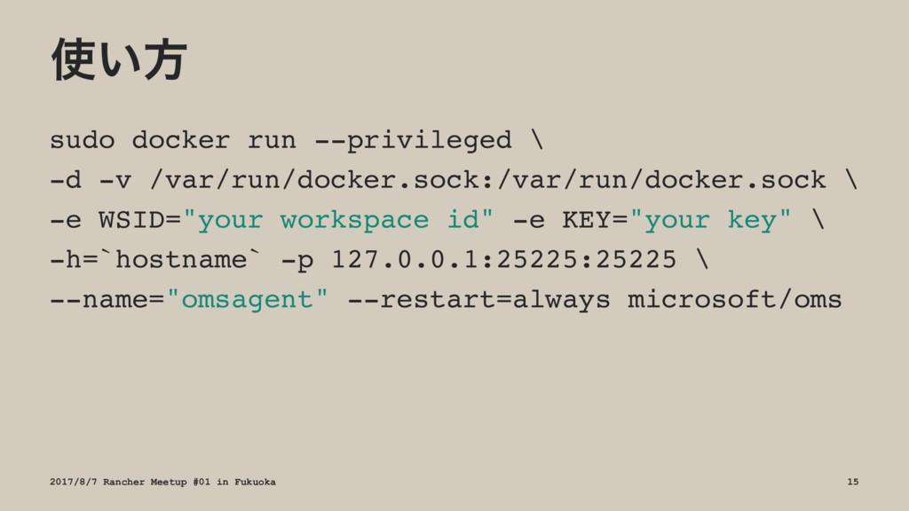 ͍ํ sudo docker run --privileged \ -d -v /var/r...