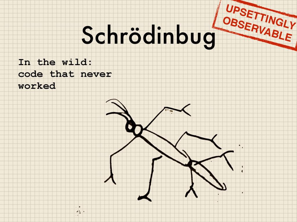 Schrödinbug In the wild: code that never worked...