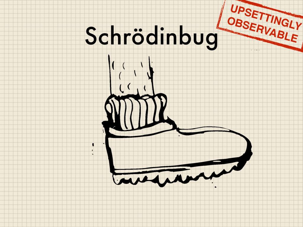 Schrödinbug UPSETTINGLY OBSERVABLE