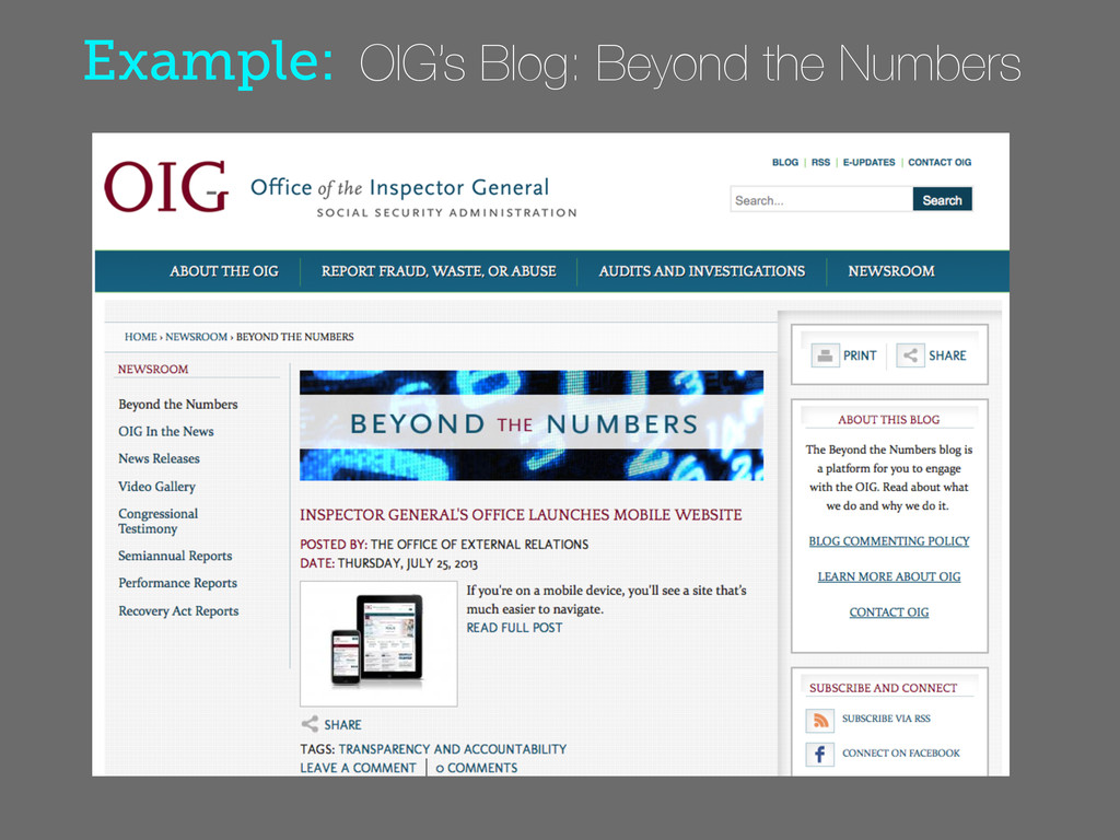 Example: OIG's Blog: Beyond the Numbers