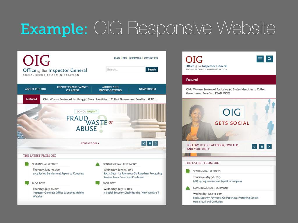 Example: OIG Responsive Website