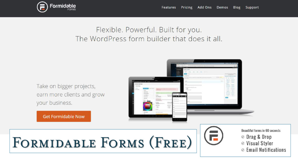 Formidable Forms (Free)