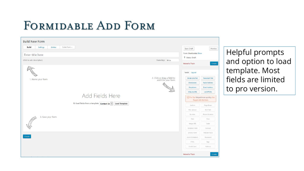 Formidable Add Form Helpful prompts and option ...