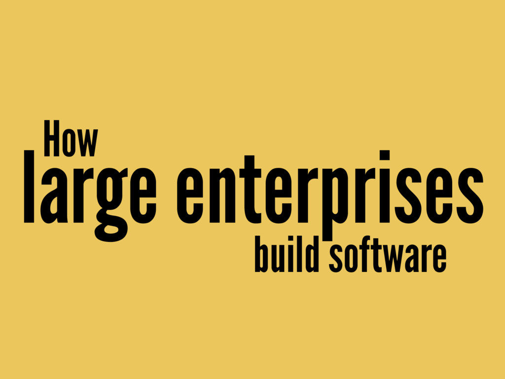 How large enterprises build software