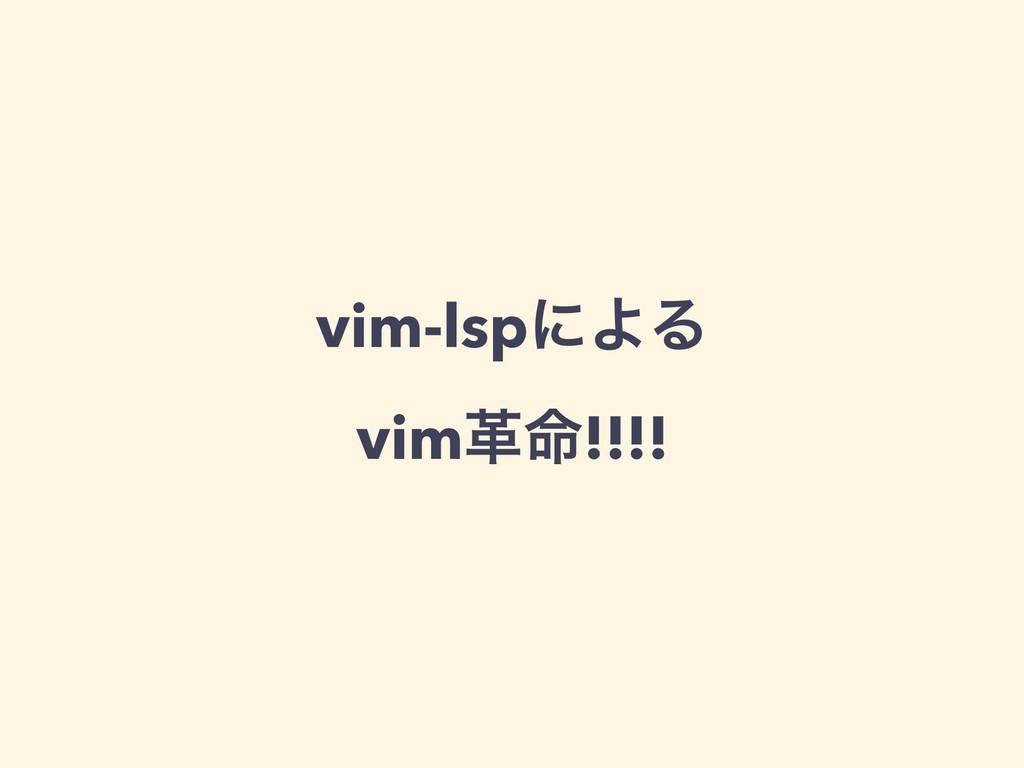 vim-lspʹΑΔ vimֵ໋!!!!