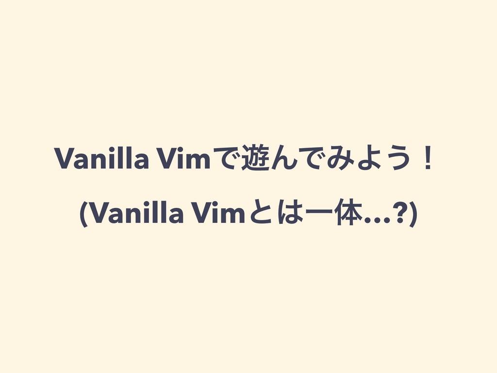 Vanilla VimͰ༡ΜͰΈΑ͏ʂ (Vanilla VimͱҰମ…?)
