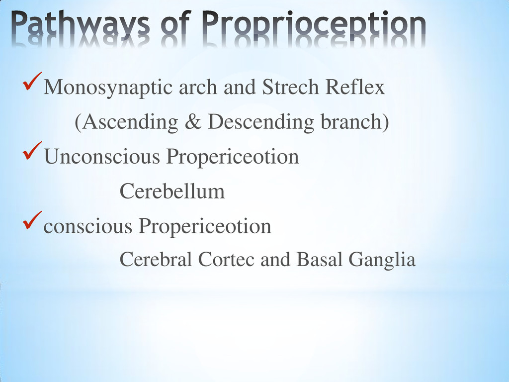 Monosynaptic arch and Strech Reflex (Ascending...