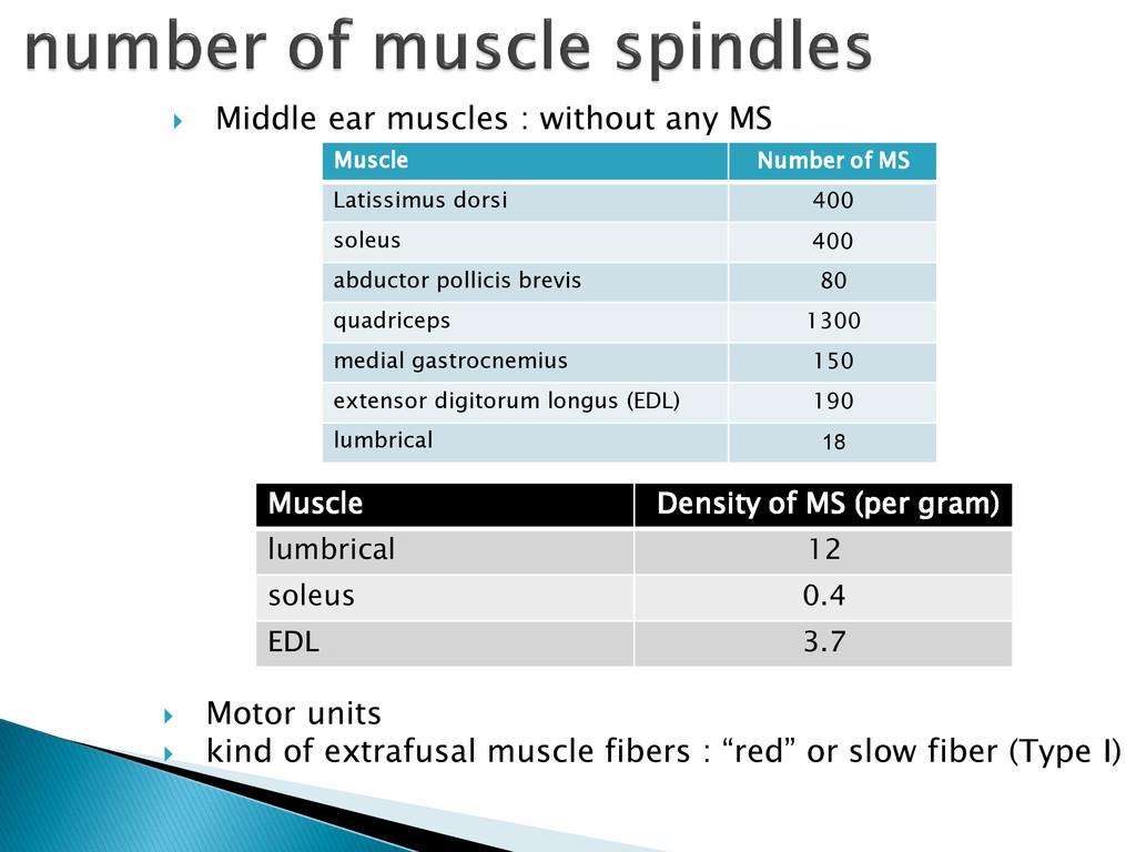  Motor units  kind of extrafusal muscle fiber...