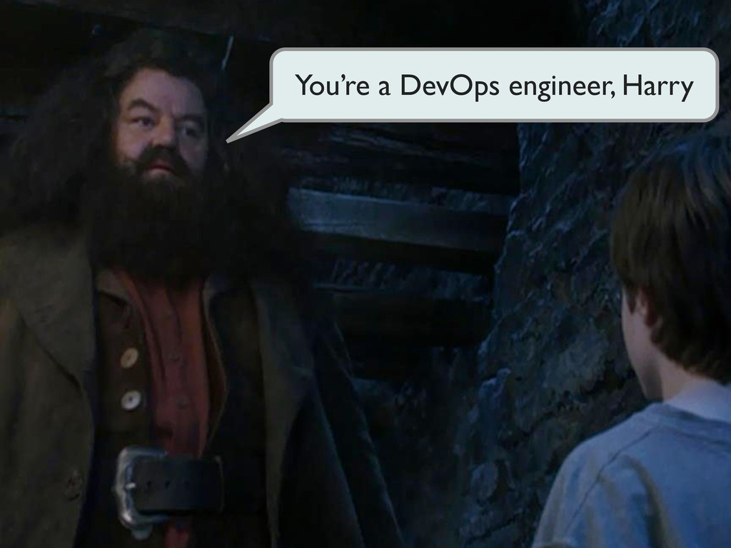 You're a DevOps engineer, Harry