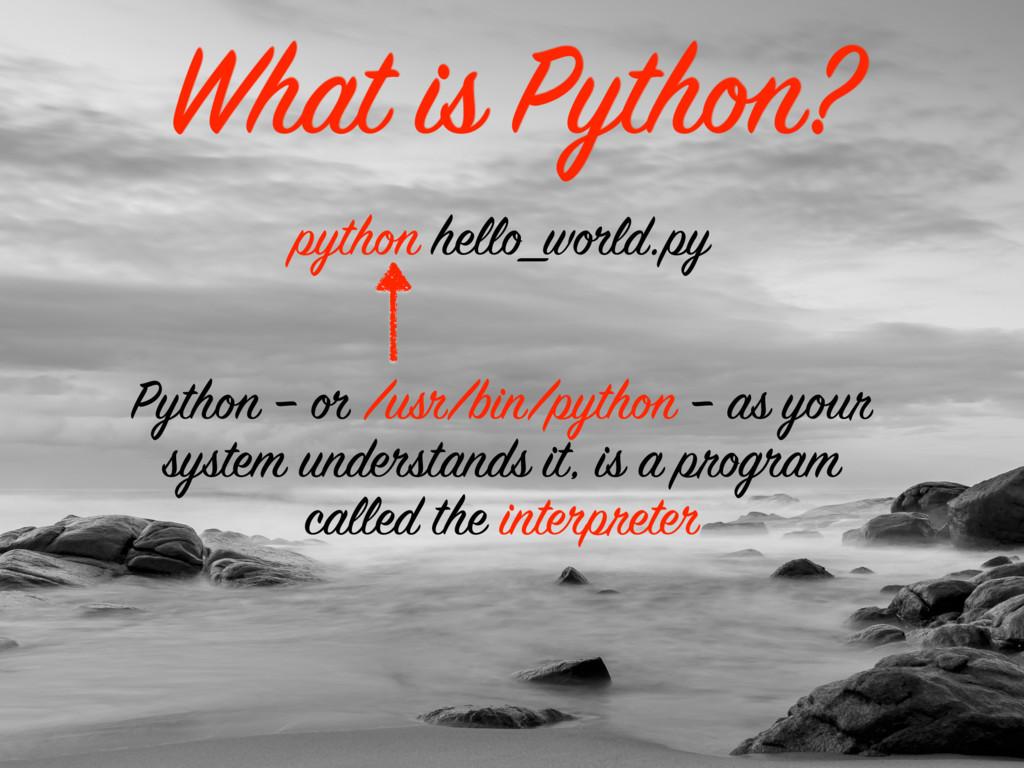 What is Python? python hello_world.py Python – ...