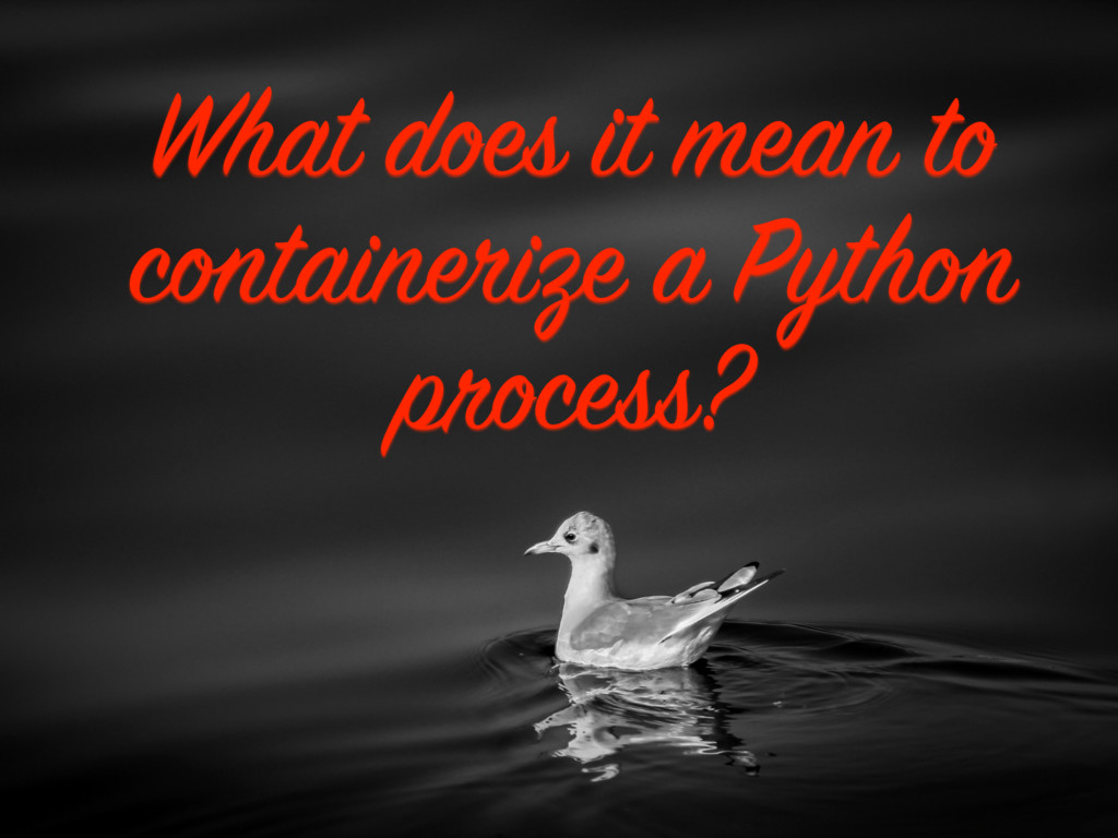What does it mean to containerize a Python proc...