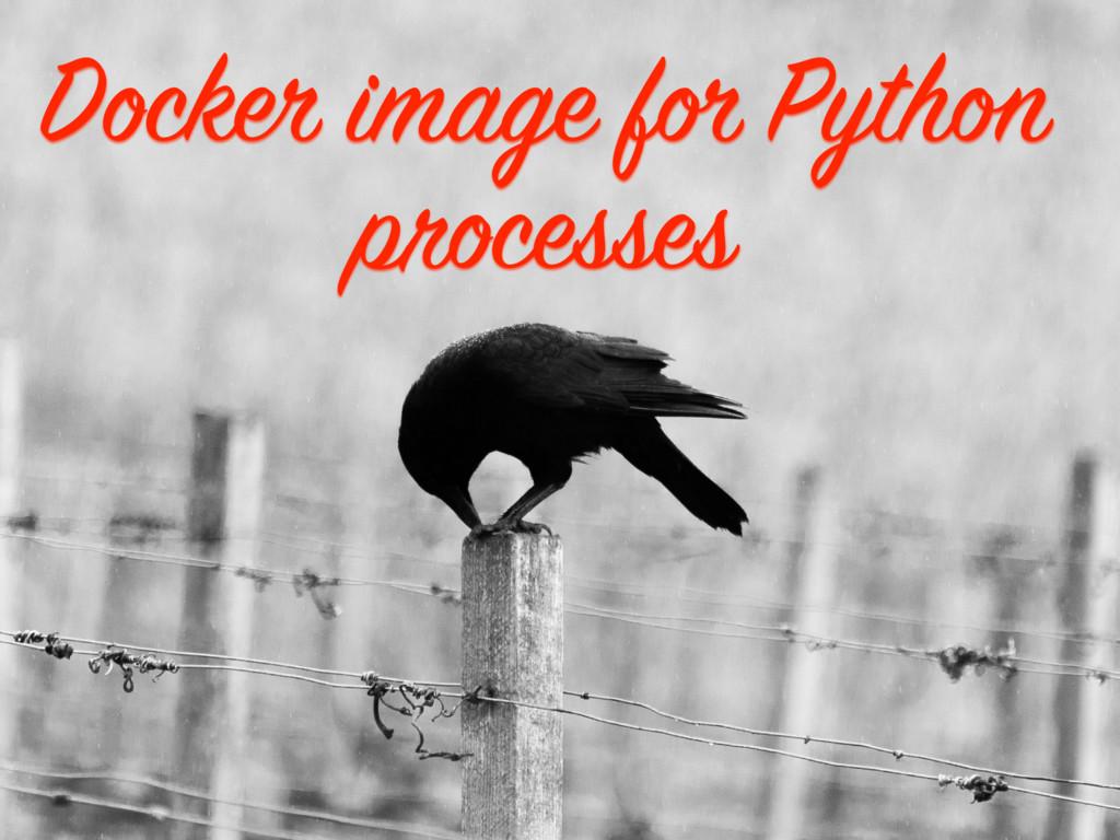 Docker image for Python processes