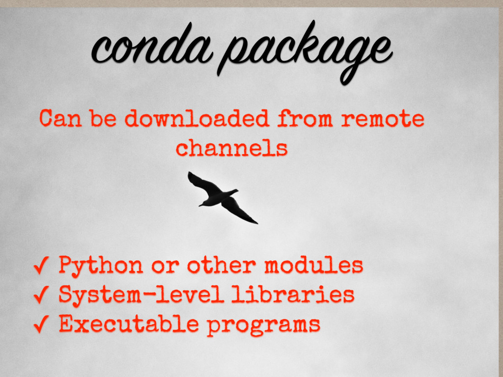 ✓ Python or other modules ✓ System-level librar...