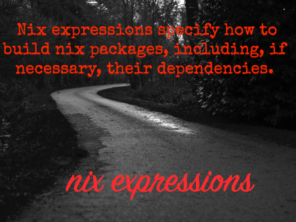 nix expressions Nix expressions specify how to ...