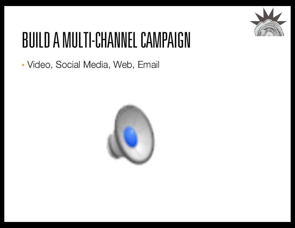 BUILD A MULTI-CHANNEL CAMPAIGN • Video, Social...