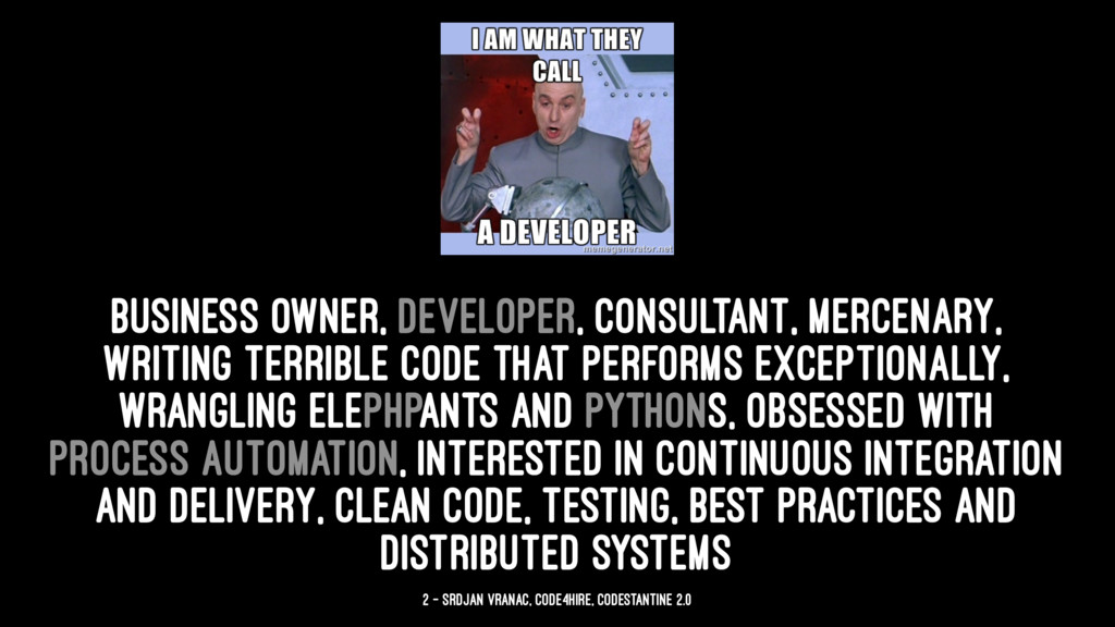 business owner, developer, consultant, mercenar...