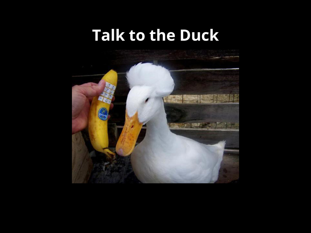 Talk to the Duck