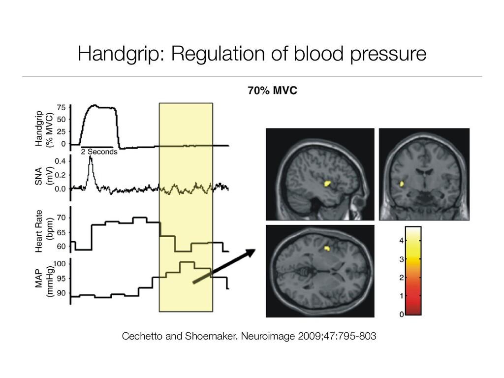 Handgrip: Regulation of blood pressure D.F. Cec...