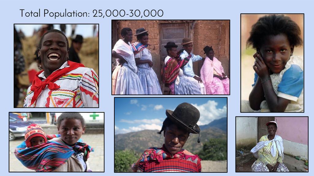 Total Population: 25,000-30,000