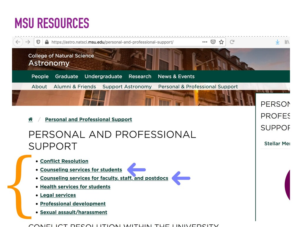 MSU RESOURCES {