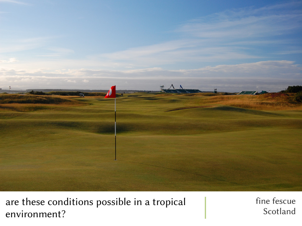 are these conditions possible in a tropical env...
