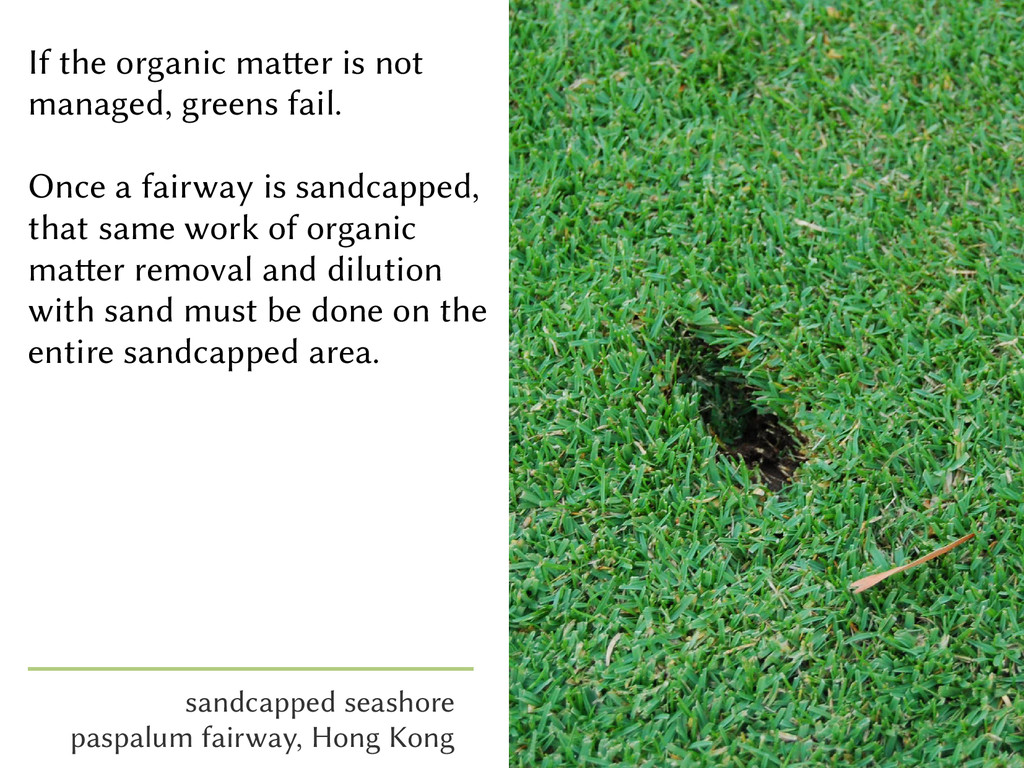 If the organic matter is not managed, greens fa...