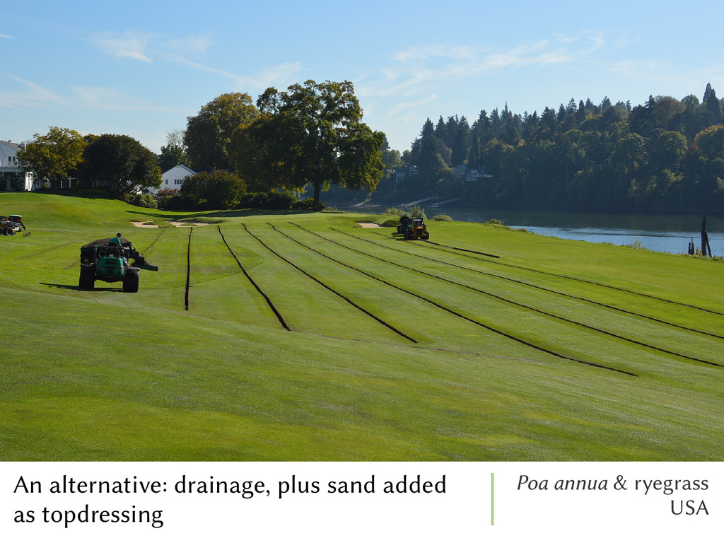 An alternative: drainage, plus sand added as to...