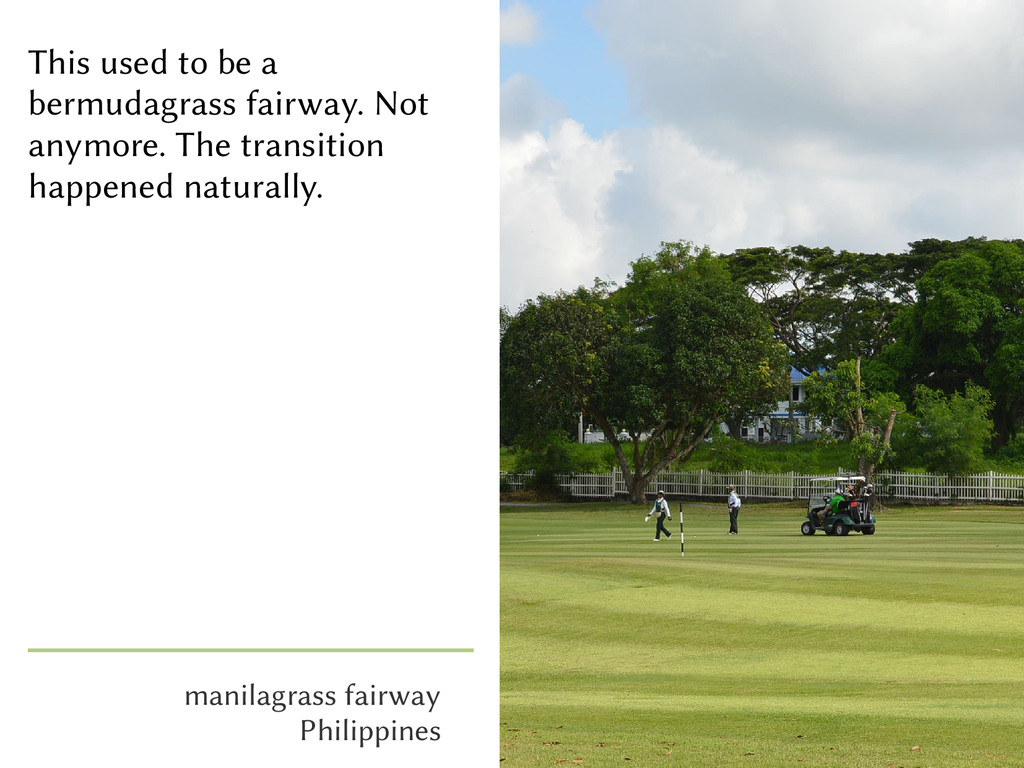 manilagrass fairway Philippines This used to be...