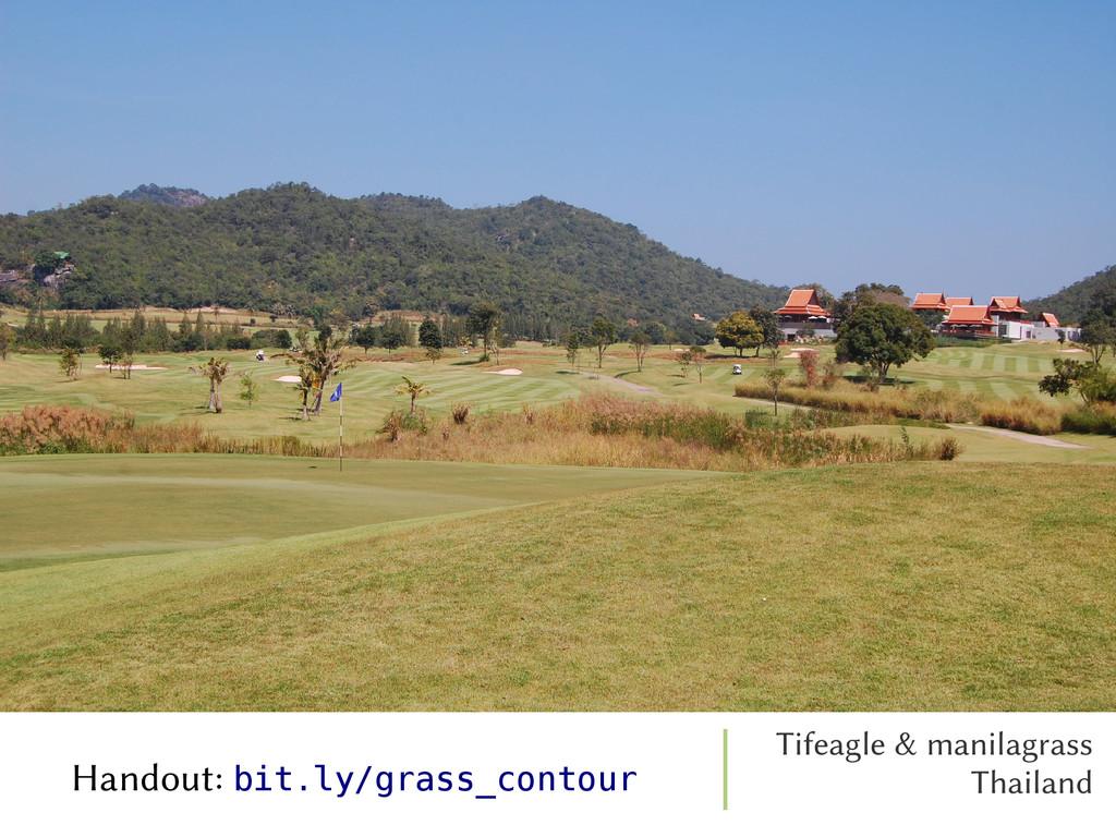 Tifeagle & manilagrass Thailand Handout: bit.ly...