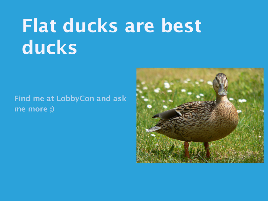 Flat ducks are best ducks Find me at LobbyCon a...