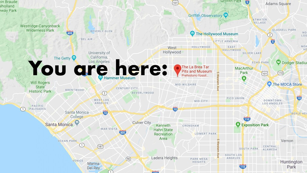 You are here: