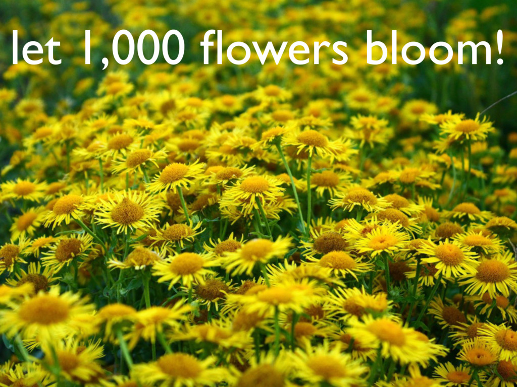 let 1,000 flowers bloom!